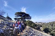 Hiking Trip from Barouk Cedars to Ammiq Wetland with Dale Corazon - Lebanon Explorers