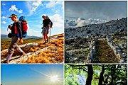 Jbaa Mountain Peak Hike with Wild Adventures