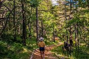 Full Day Journey Between the Cedars of Tannourine & Hadath el Jebbeh with Lebanon by Nature