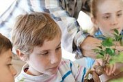 Plantation Experience for Kids