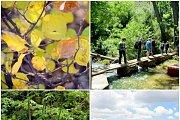 Darb Al-Jawz Hike with Wild Adventures