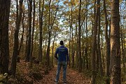 Colorful Fall Hike in Kfardebian Hidden Ozer Forest with Lebanon by Nature