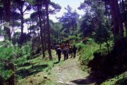 Bkassine Hiking Trip with Blue Carrots & I-Hike
