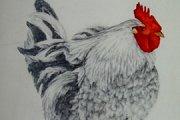 J'ai des idees plein la tete, Art Exhibition by Rita Kazan
