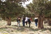 Hiking Trip to Jroud Al Akoura with Blue Carrot