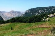 Arz Tannourine Hiking with Dale Corazon