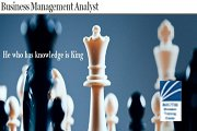 Business Management Analyst Training