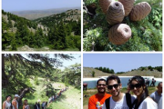 Hiking Shouf Cedar Forest Reserve/Barouk with ProMax