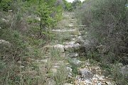 Randonnée à Ghazir, Caza du Kesrouane avec le Club des Vieux Sentiers