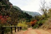 Wadi Qadisha Hiking with Byblos & Beyond