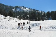 Snowshoeing at Barouk Cedars Reserve