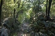 Randonnée à Chnaniir – Raachine, caza de Kesrouane avec le Club des Vieux Sentiers