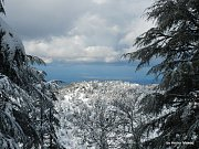 Snowshoeing in Ehden Reserve with Adventures in Lebanon
