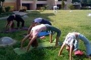 Outdoor Detox Yoga with Olga