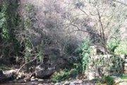Bireh Wadi Set A hiking trip with Vamos Todos