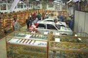 Voitures, mini-voitures et courses folles avec Billy Karam avec NeosKids
