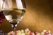 Wine Tasting Workshop with Carlos Kachan