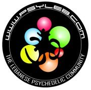 "Psyleb Presents: ""Forest Frequencies"", The Electronic Music Festival"