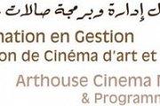 Arthouse Cinema Management & Programming Workshop