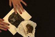 """""""Sorties"""": screening and presentation by Laure de Selys"""