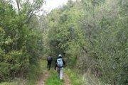 Lebanese Adventure: Hiking Bireh-Rechmaya