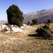 Hiking Afqa's plateau, Juniper trail with Byblos & Beyond