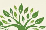 BandAge (Go Green - Go TreeYo!)