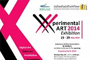 Xperimental Art Exhibition 2014