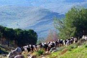 Baldati - Hiking in Wadi Khaled