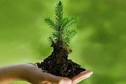 ISO 14001:2004 Essentials-Environmental Management System