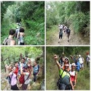 Bkassine Pine Forest - Jezzine with ProMax