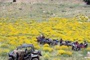 ATV Adventure from Faraya to Laqlouq
