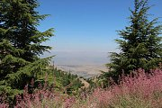 Barouk reserve