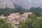 Hiking with Bee Happy - Jroud Karm El Mohr