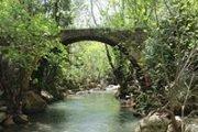 Magic hike to wede naher el barouk with Hikingo