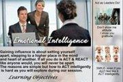 Emotional Intelligence and Body Language Coaching Session by Dr. Fadi Hashem