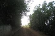 Soft Sunset night Hike Kfardebian
