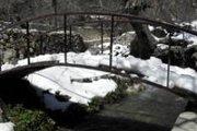 Snowshoeing in Zaarour with Baldati