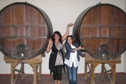 Wine Tour with Vamos Todos
