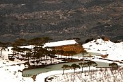 Snowshoeing To Falougha Lakes with WILD ADVENTURES