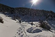 Snowshoeing To Ain Zhalta Reserve with WILD ADVENTURES