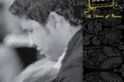 ORIENTAL ( Tarab & Kodod Halabiyah) LIVE MUSIC