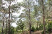 Hiking from Deir Mar Semaan (Aito) to Deir Hamatoura with Footprints Nature Club