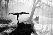 THE ART OF BALANCING * A VINYASA YOGA WORKSHOP WITH BARBI POWERS (NYC)
