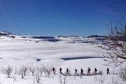 Qanat Bakish Snowshoeing with Beyond Byblos