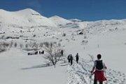 B2h to Laklouk Snowshoeing