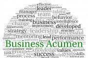 Business Acumen 1-day Workshop