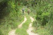 Wadi Laymoun Hiking with Vamos Todos