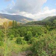 Hiking Mazraat El Shouf to Bisri with Bee Happy