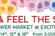 Exotica Flower Market